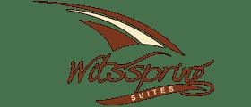 Witsspring Logo